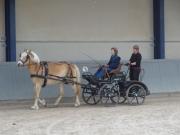 Fahrlehrgang1499