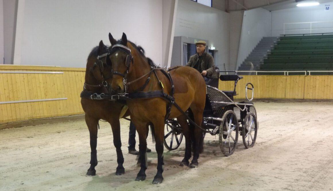 Fahrlehrgang1476